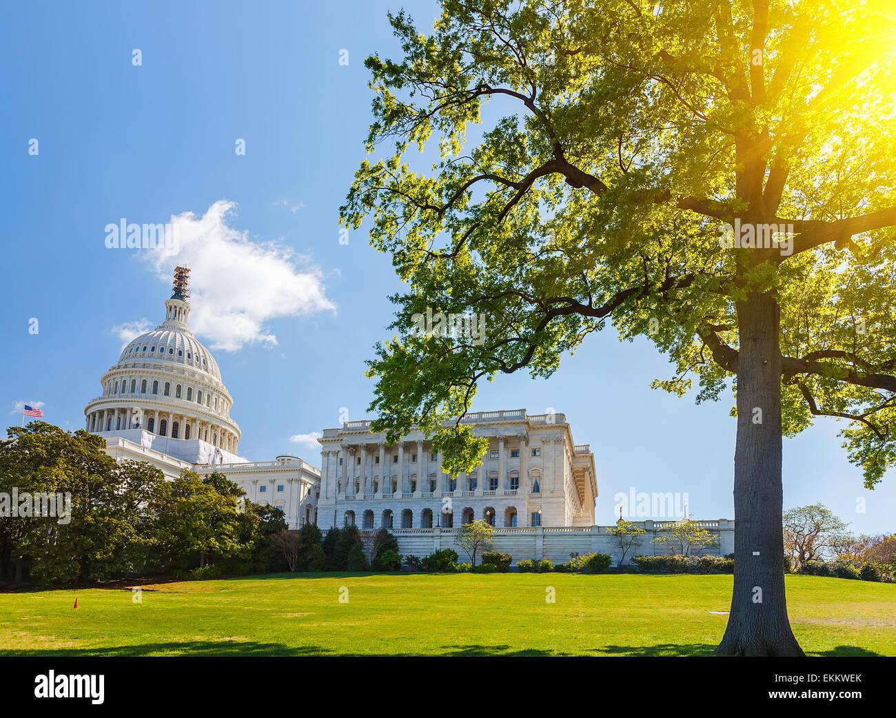 U.S. Capitol am sonnigen Tag Stockbild