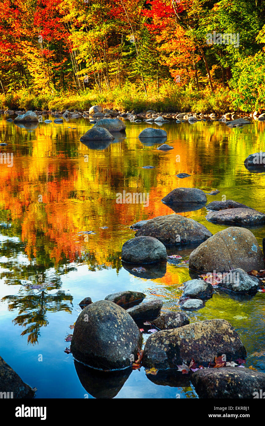 Niedrigen Winkel Ansicht des Flusses mit Felsen und bunte Laub Reflexionen, Swift River, White Mountains National Stockbild