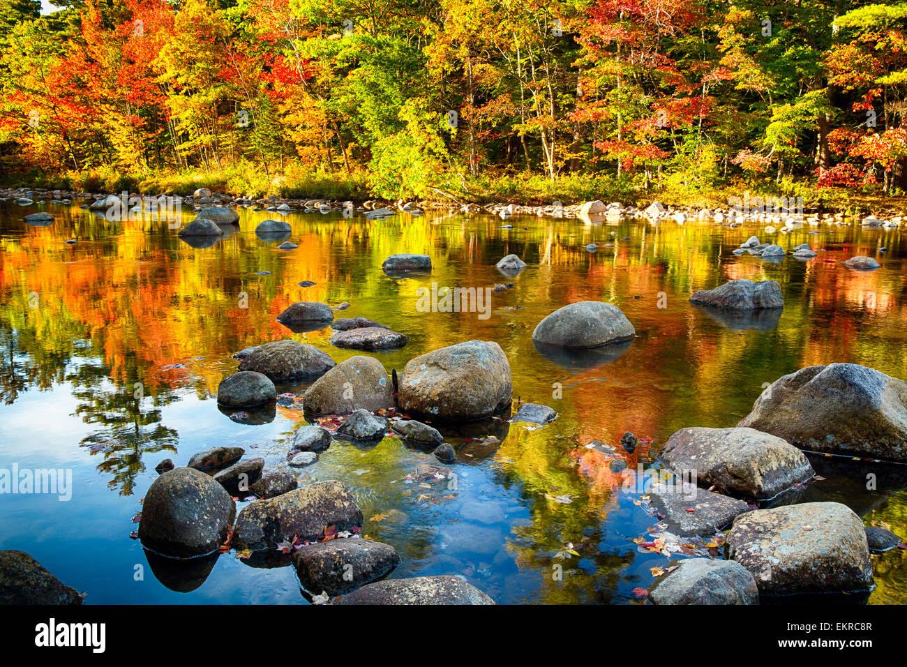 Blick auf einen Fluss mit Felsen und bunte Laub Reflexionen, Swift River, White Mountains National Forest, New Hampshire Stockbild