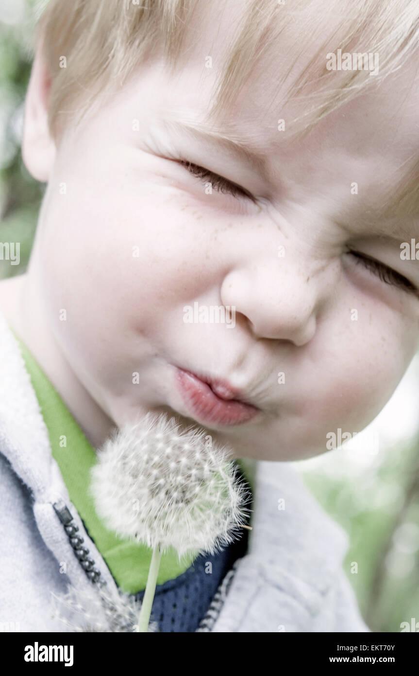 Kind schließt die Augen und bläst auf Löwenzahn Stockbild