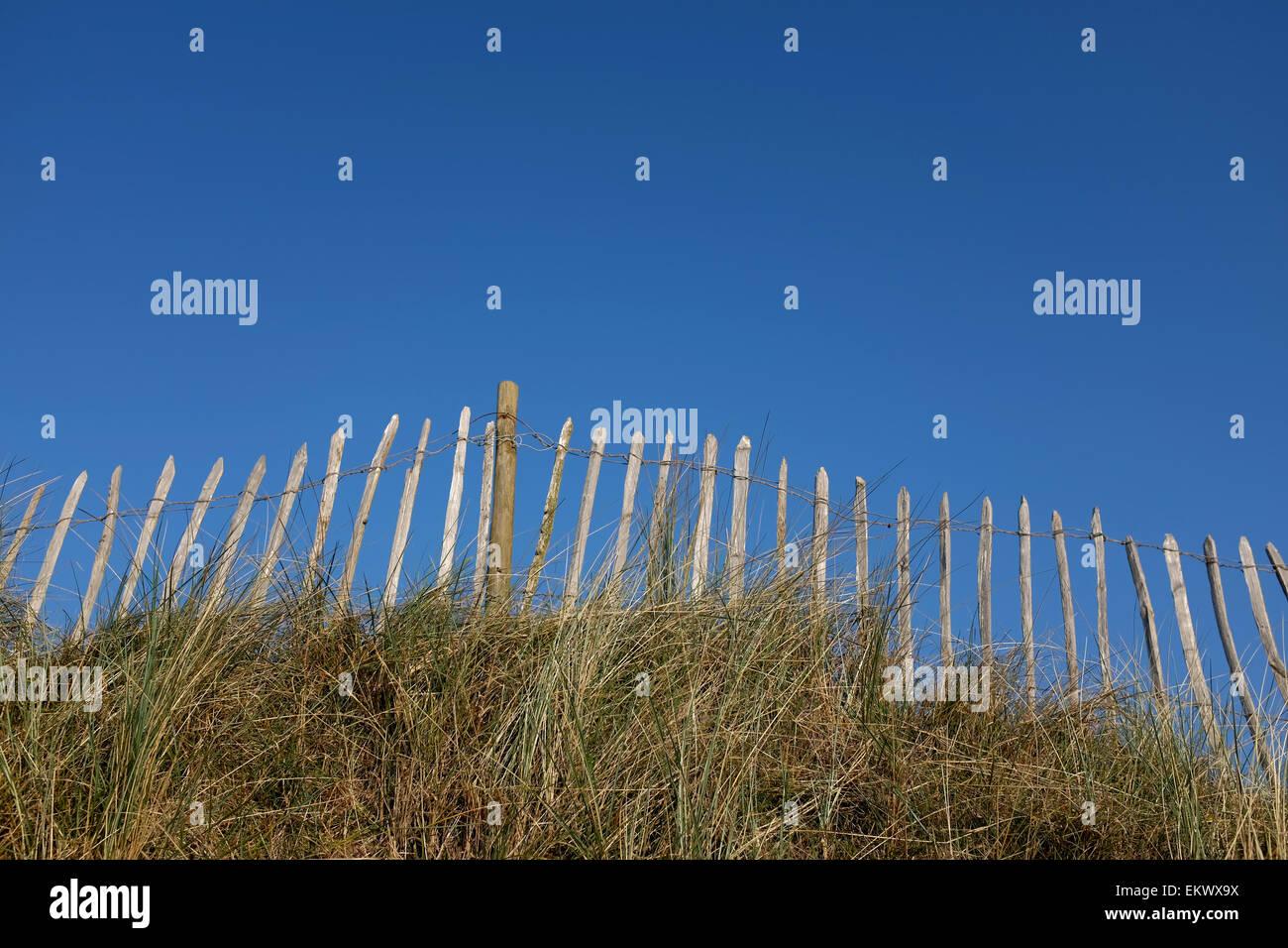 Holzzaun mit einem blauen Himmel und langen Rasen Stockbild