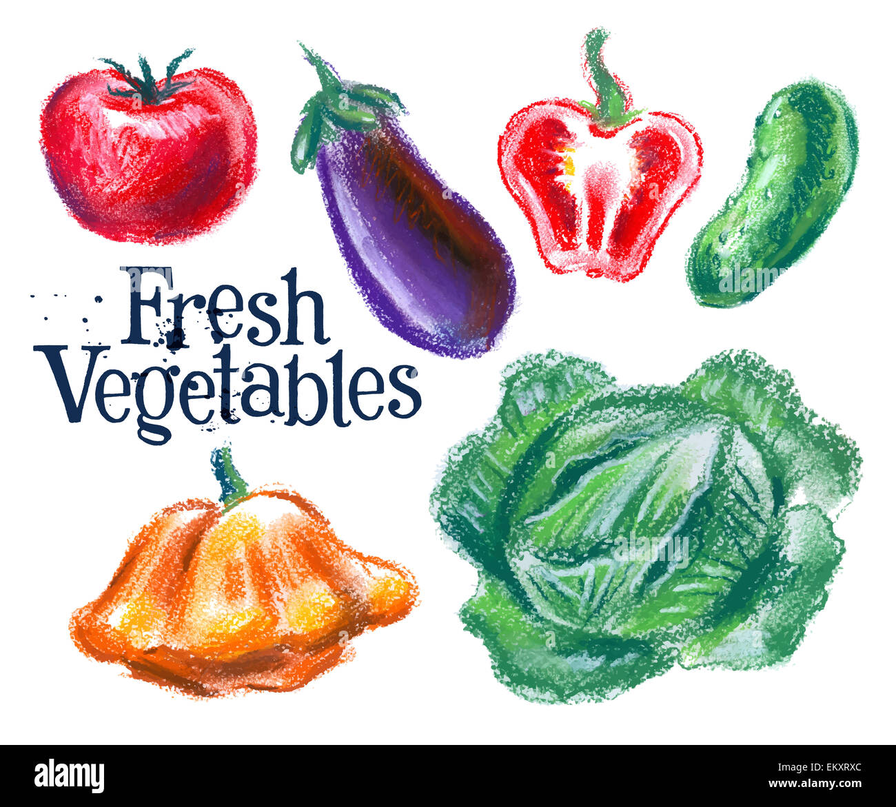 Eggplant Sketch Stockfotos & Eggplant Sketch Bilder - Alamy