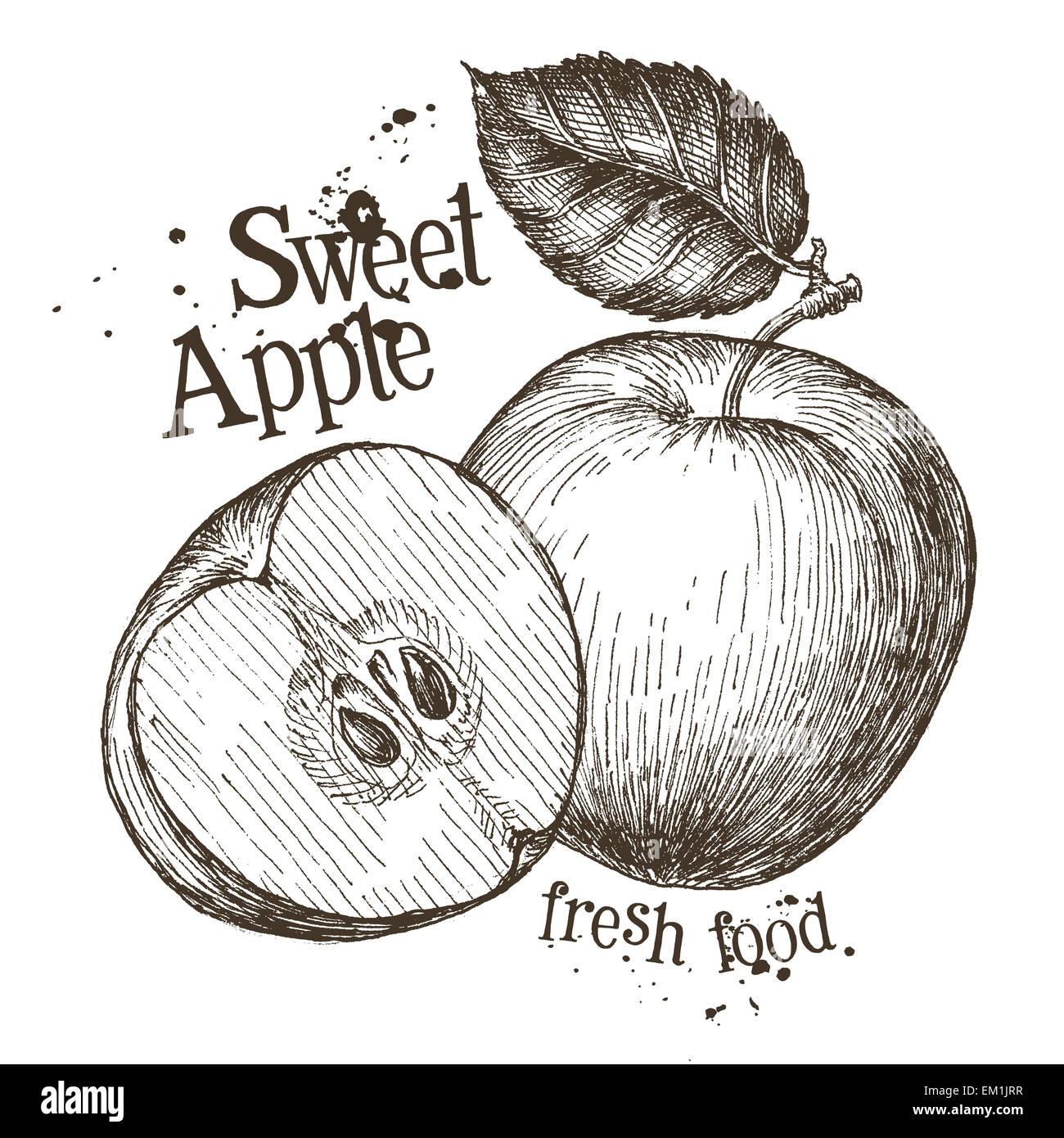 Apfel-Vektor-Logo-Design-Vorlage. frisches Obst, Essen oder Kochen ...