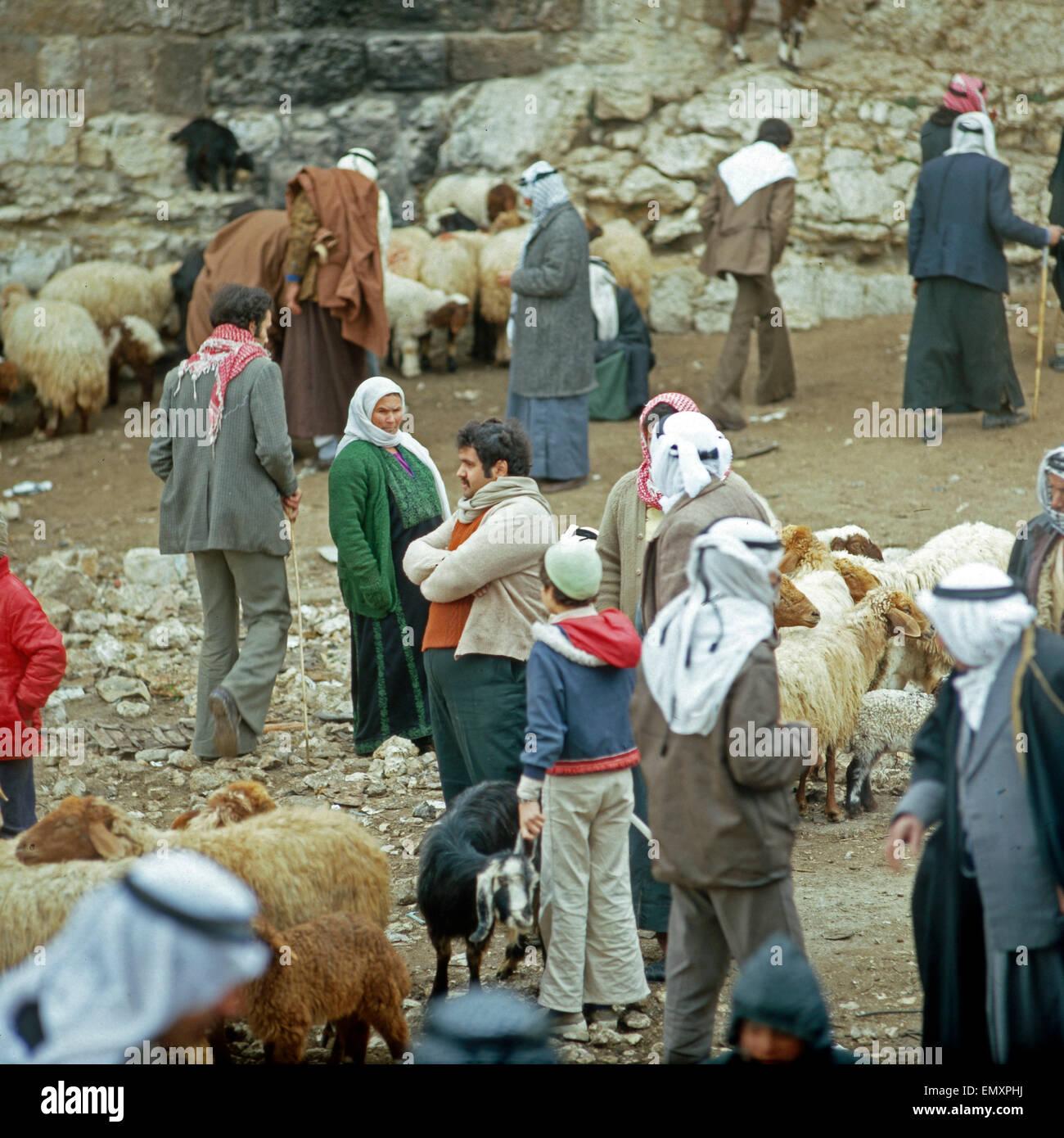 Kunden Und Händler Auf Dem Viehmarkt in Hebron, Israel Ende 1970er Jahre. Debitoren und Kreditoren auf dem Stockbild