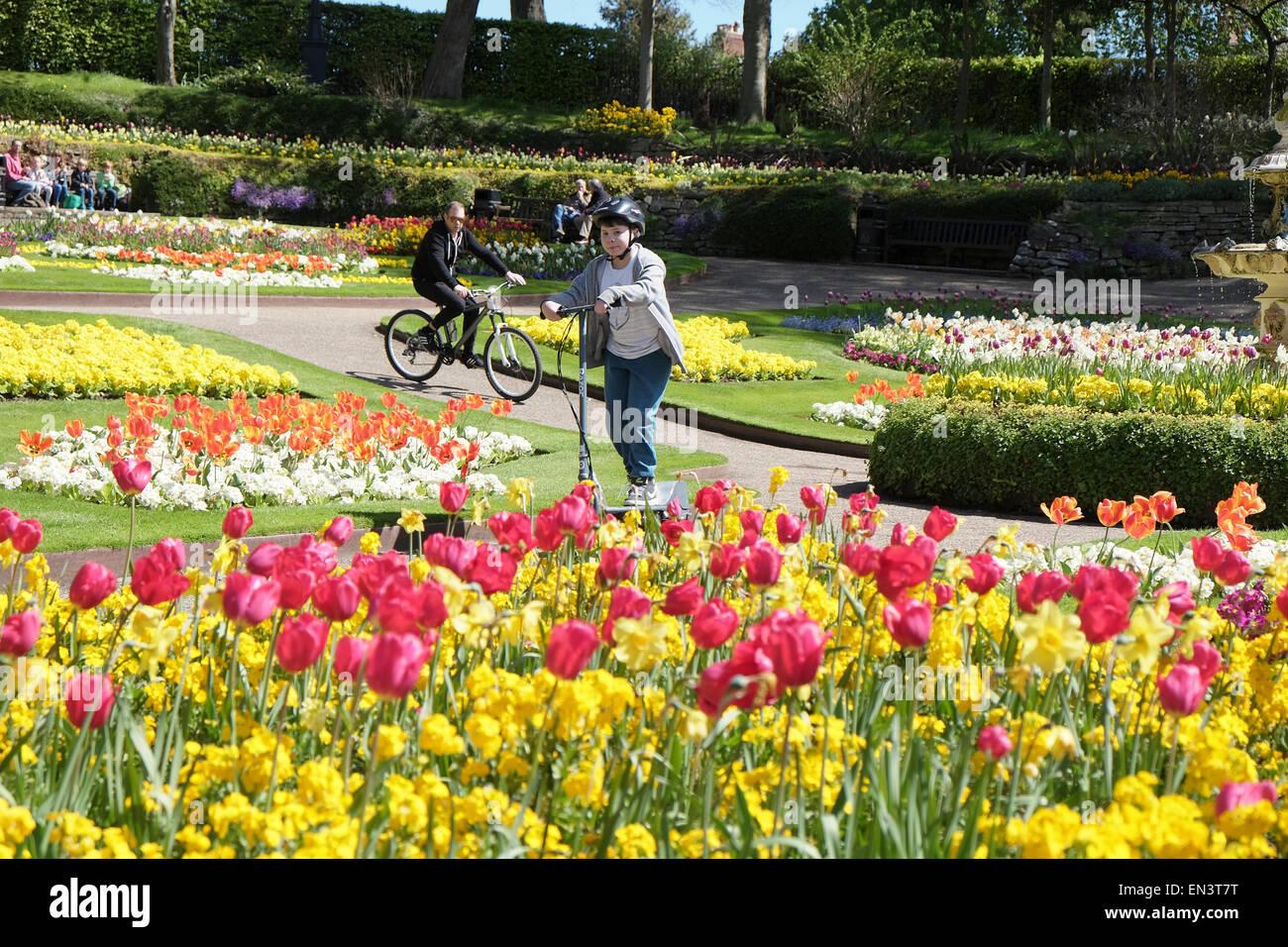 Shrewsbury, Shropshire: The Dingle in Shrewsbury ist beliebt bei Einheimischen und Besucher schätzen die Gärten Stockbild