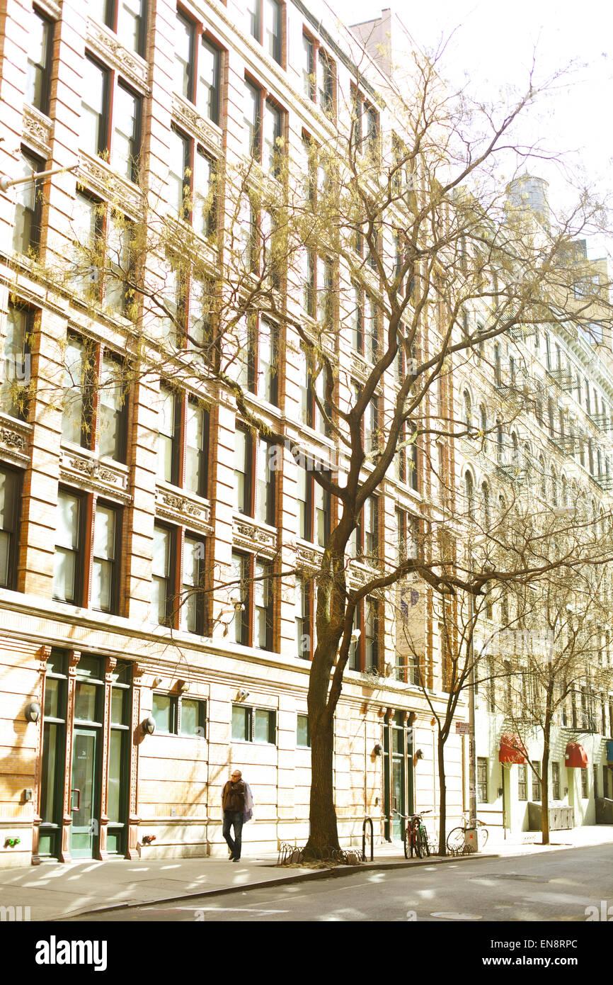 Ein Mann geht unter einem Baum auf dem Bürgersteig einer Stadtstraße in der Nachmittagssonne. Stockbild