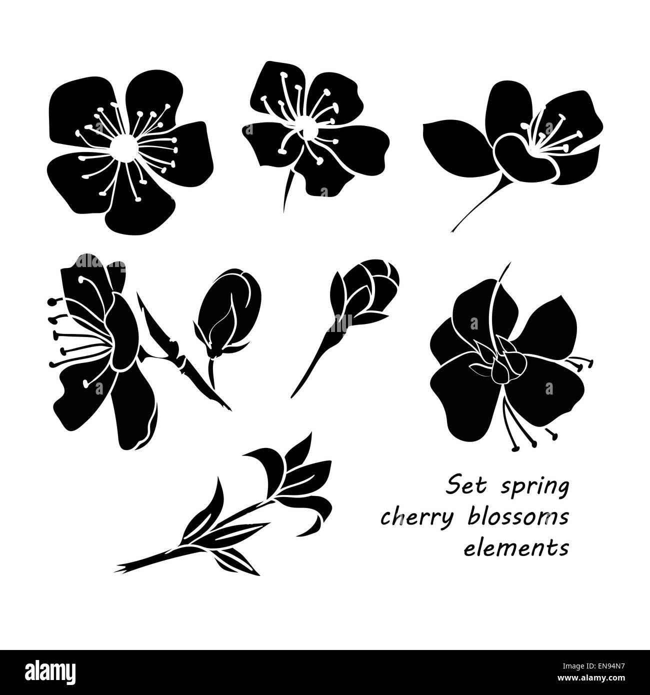 Satz Von Fruhlingsblumen Kirschblute Schwarze Silhouette