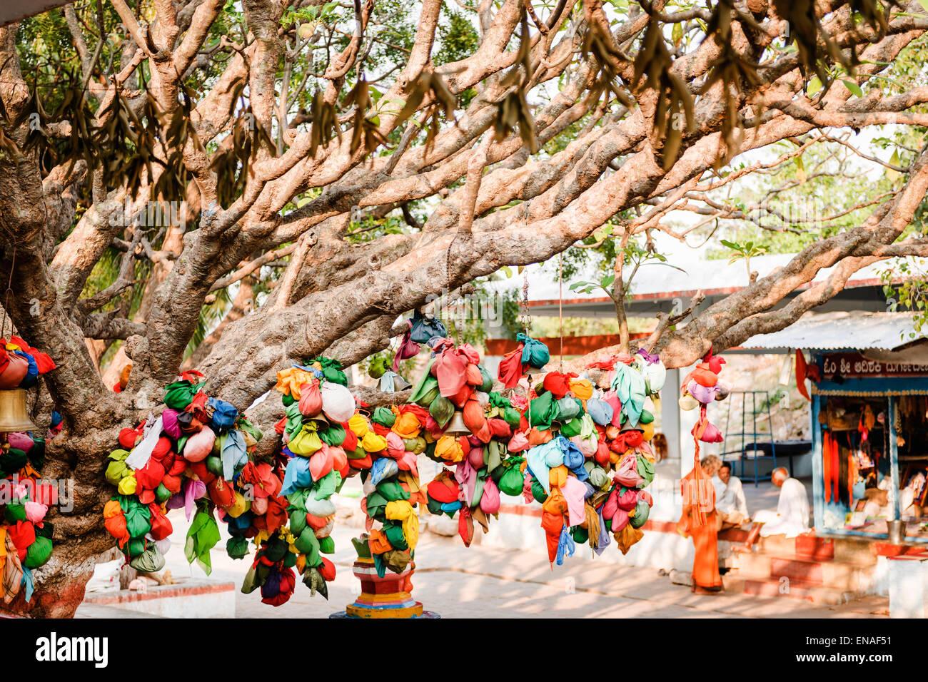 Wünschen Sie Baum im Durgadevi Tempel, Anegundi. Stockfoto