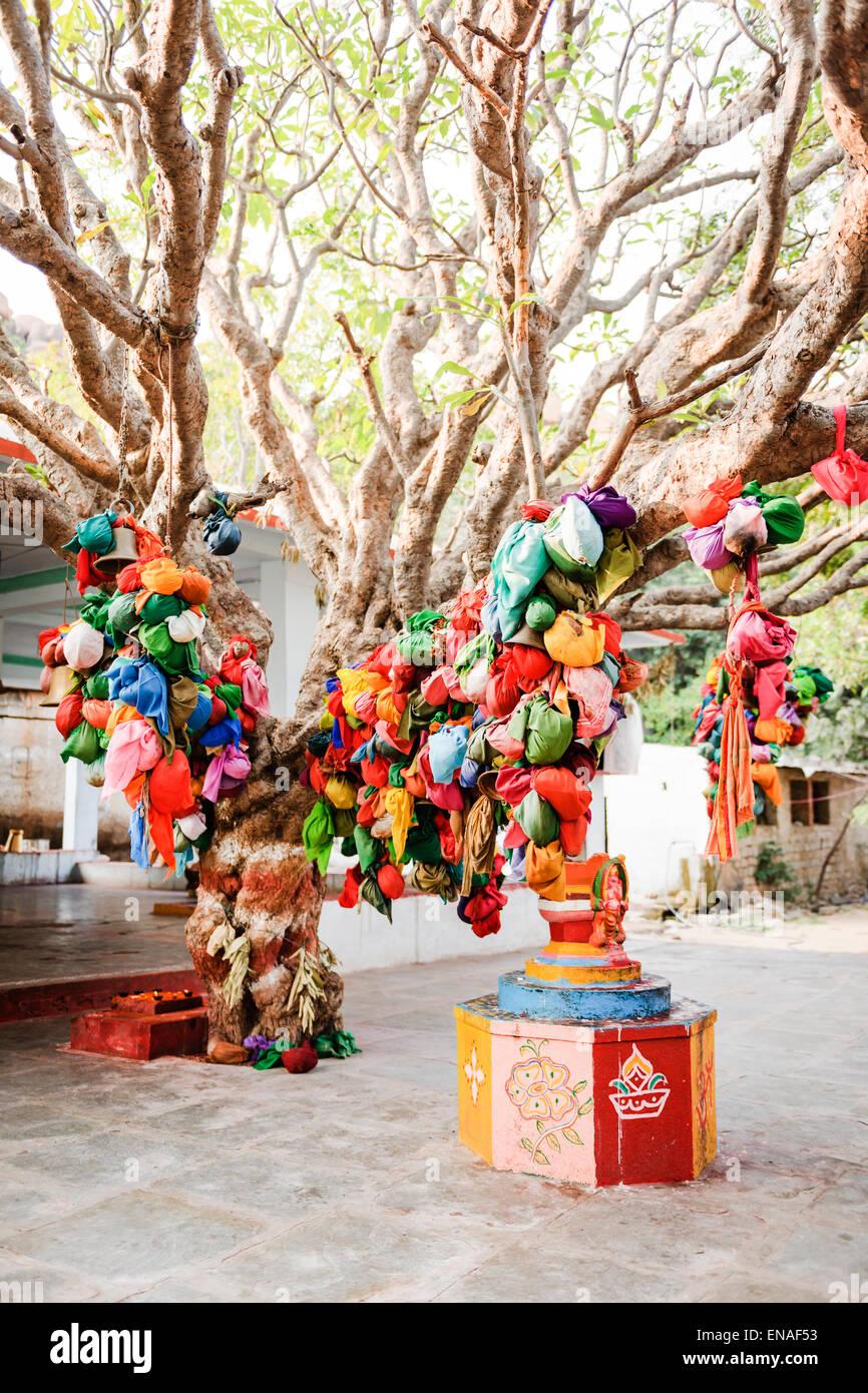 Wünschen Sie Baum und Schrein im Durgadevi Tempel, Anegundi. Stockfoto