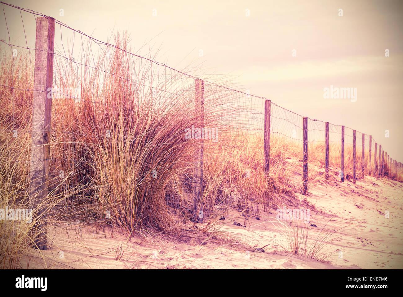 Vintage Retro-gefilterte Foto der Zaun auf einer Düne, Natur Hintergrund. Stockbild