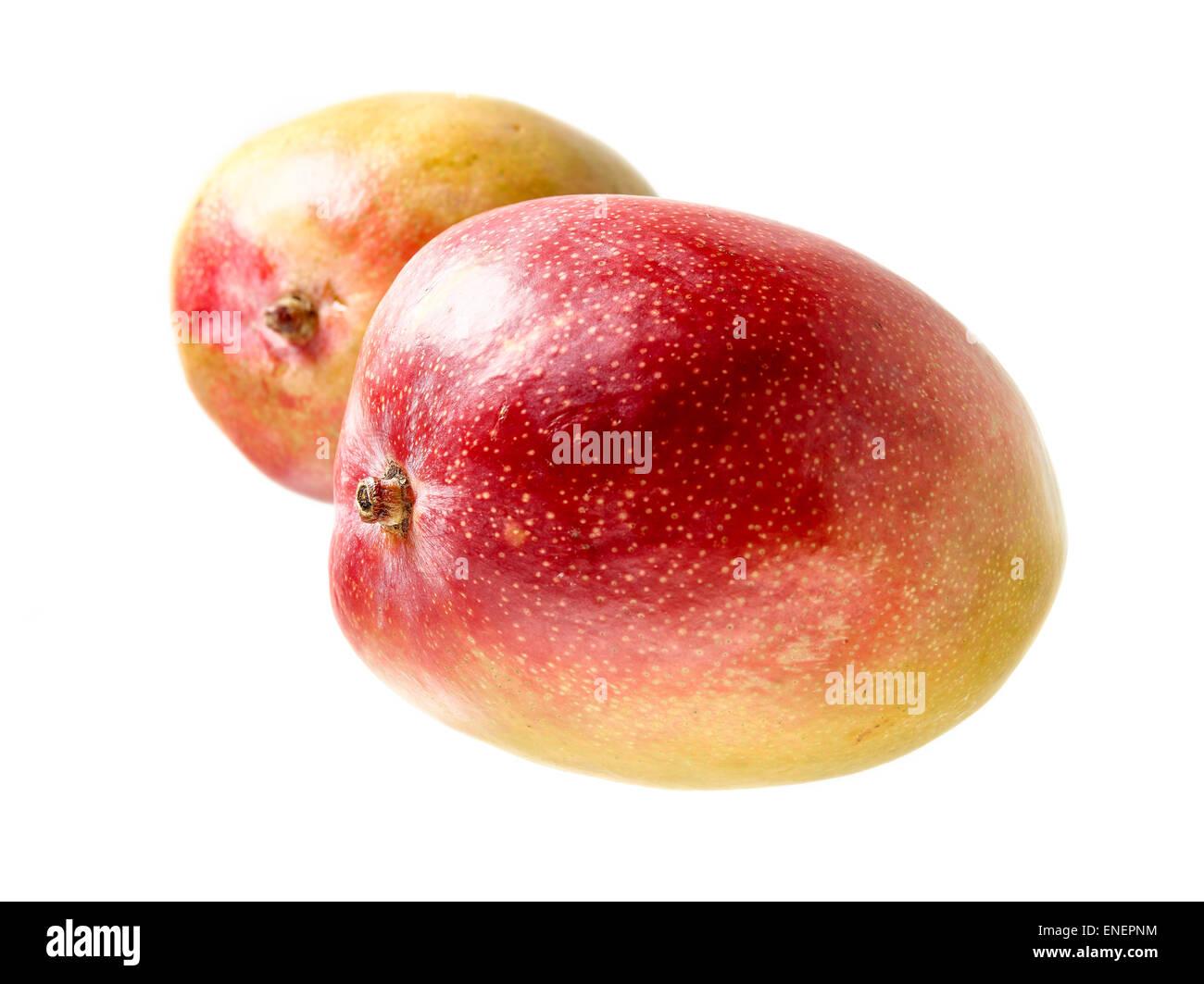 Ganze Mango-Früchte, rot, grün und Gelb-Farben - weiß-Hintergrund ...