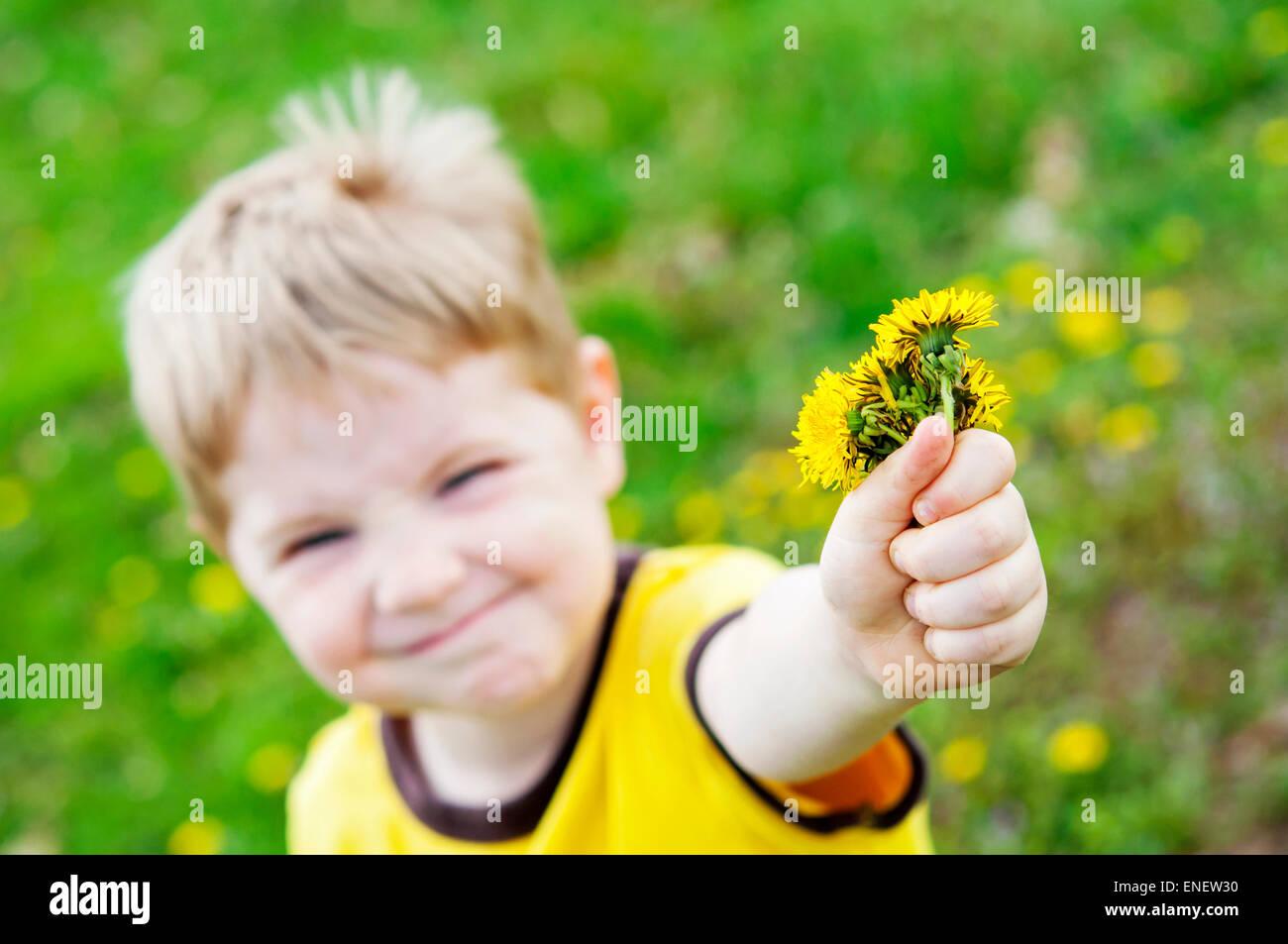 Junge, die Gabe des Löwenzahn Blumen Stockbild