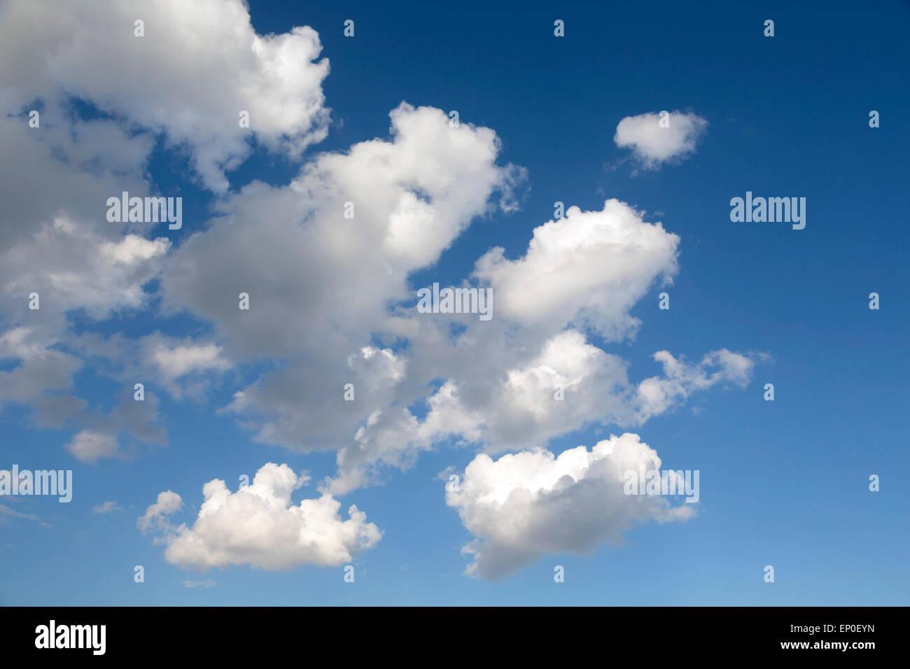 Cumulus-Wolken am blauen Himmel. Stockbild