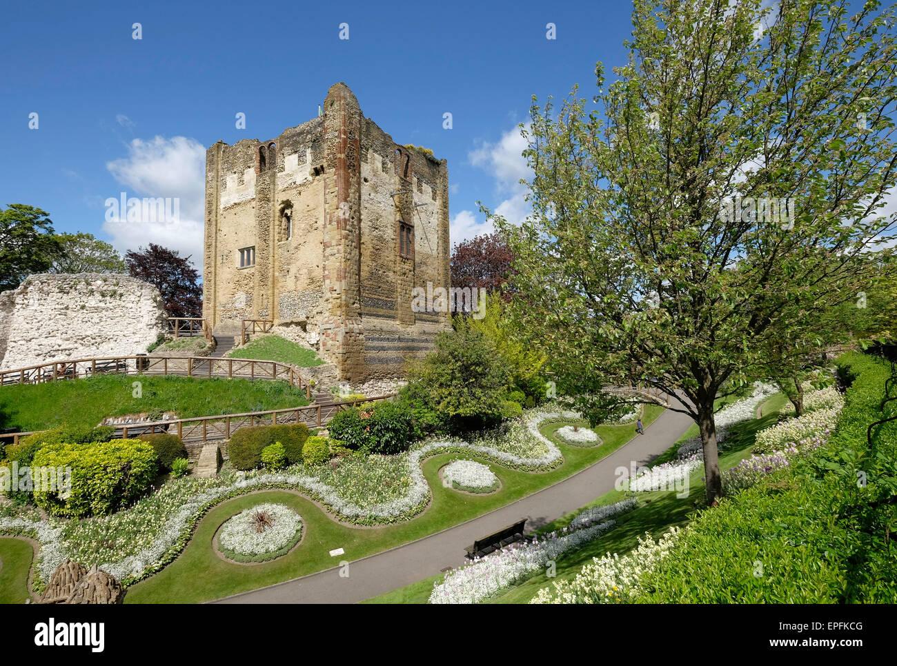 Der Schlosspark und der Great Tower, Guildford, Surrey, UK Stockbild