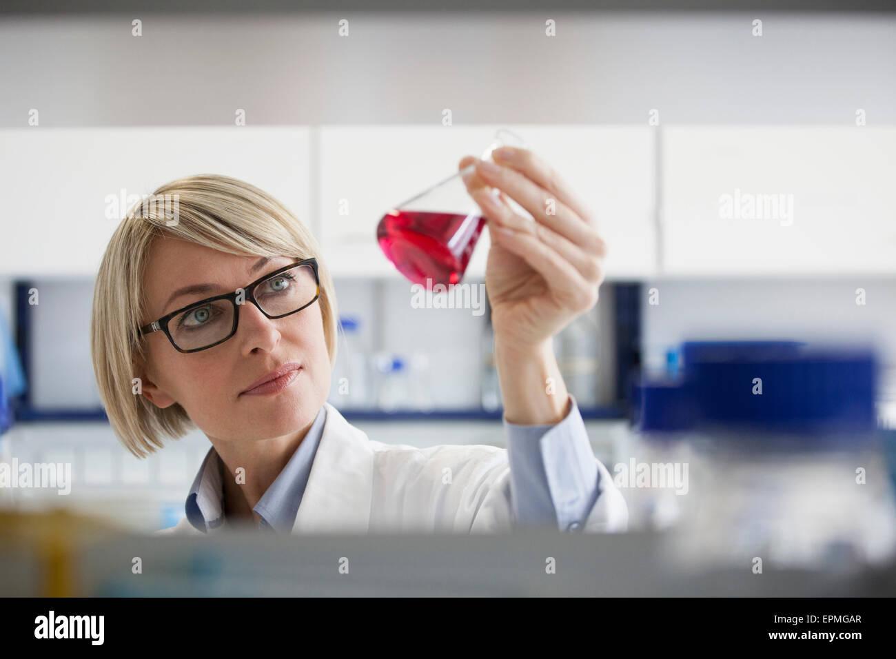 Wissenschaftler halten Erlenmeyerkolben im Labor Stockbild