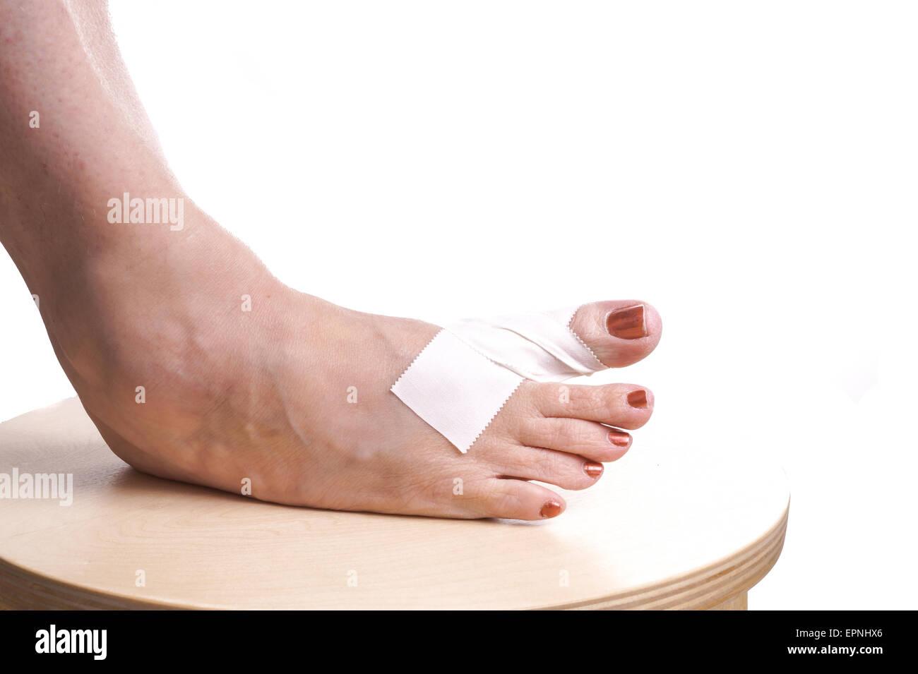 Schön Anatomie Des Fußes Und Knöchelverletzungen Galerie - Anatomie ...