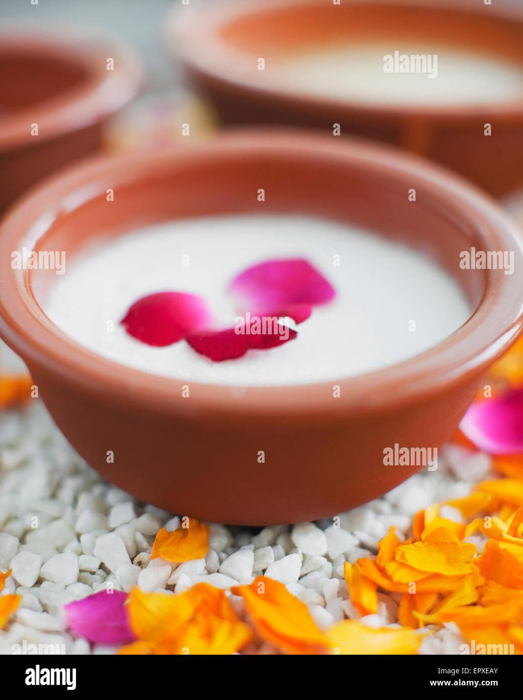 Wild Rose Salt Glow bei Ananda Spa, Ananda im Himalaya, Palast Estate, Narendra Nagar, Tehri Garhwal, Uttarakhand, Stockbild