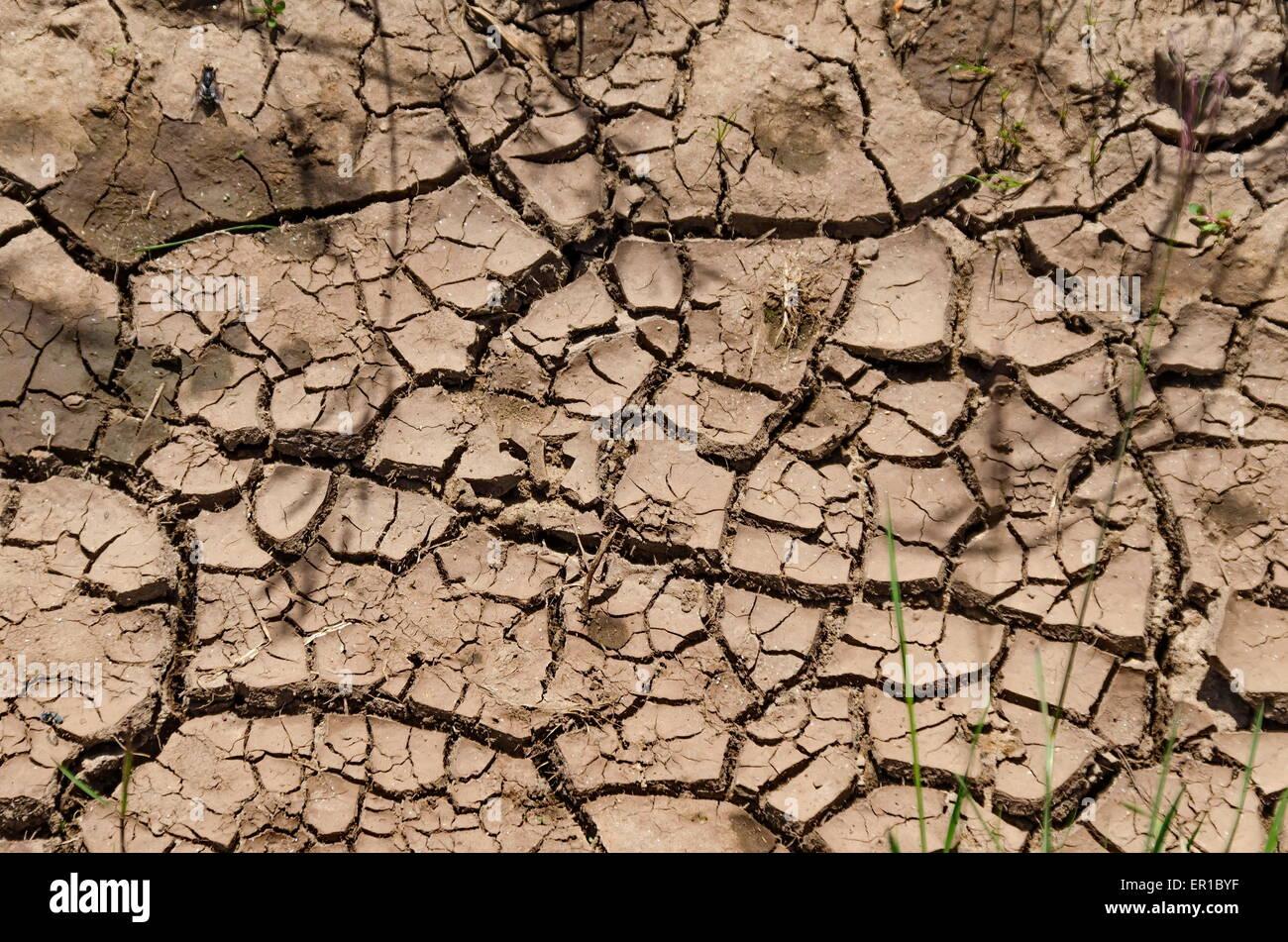 Trockener Schmutz Spalt nach lange Zeit Dürre Stockbild