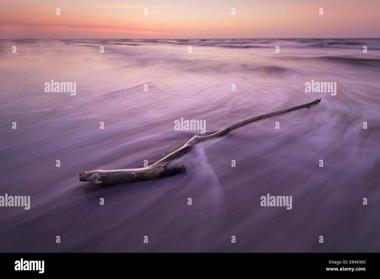 Filiale am Strand mit Wellen Motion Blur Stockbild