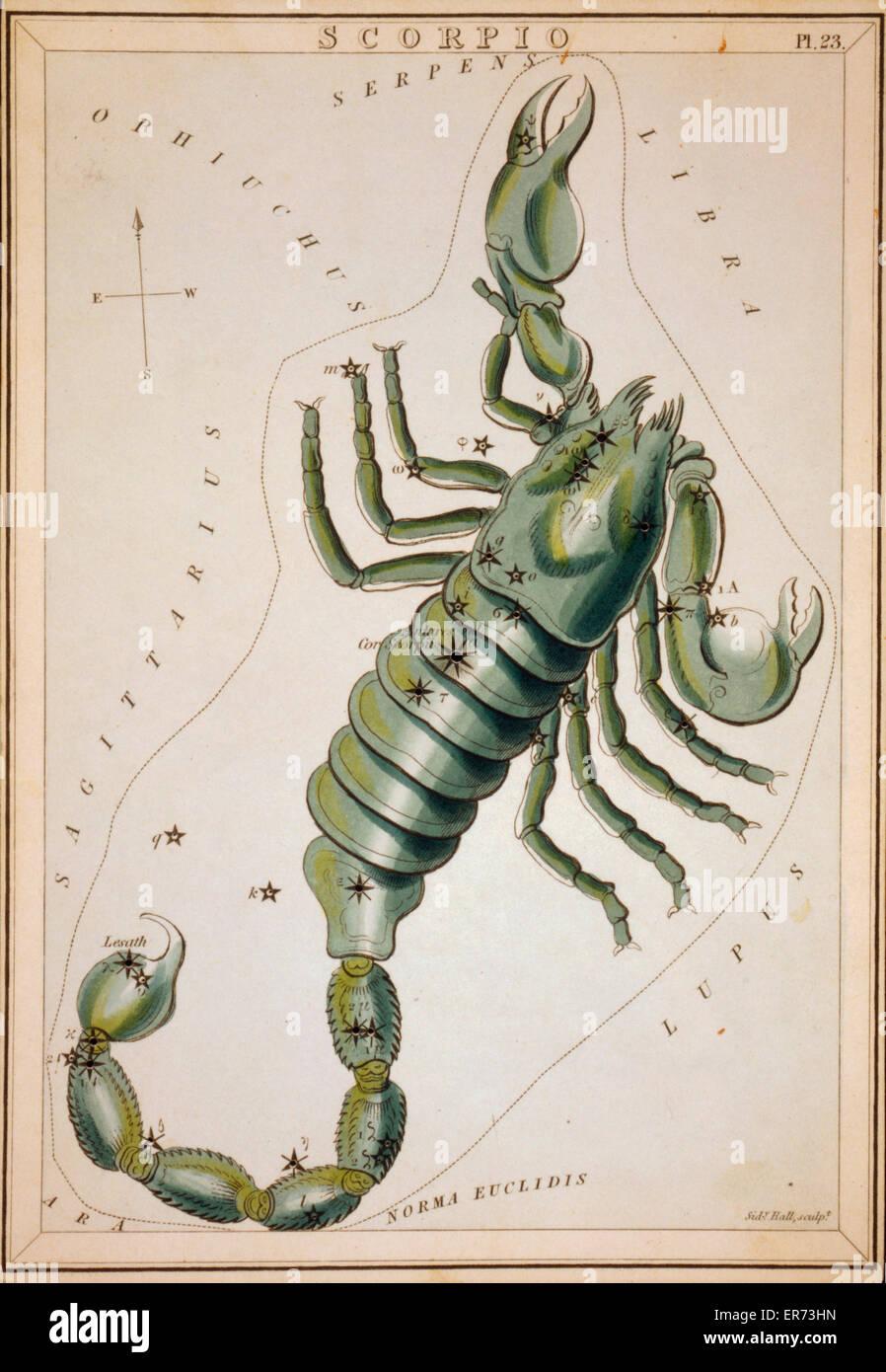 skorpion datum