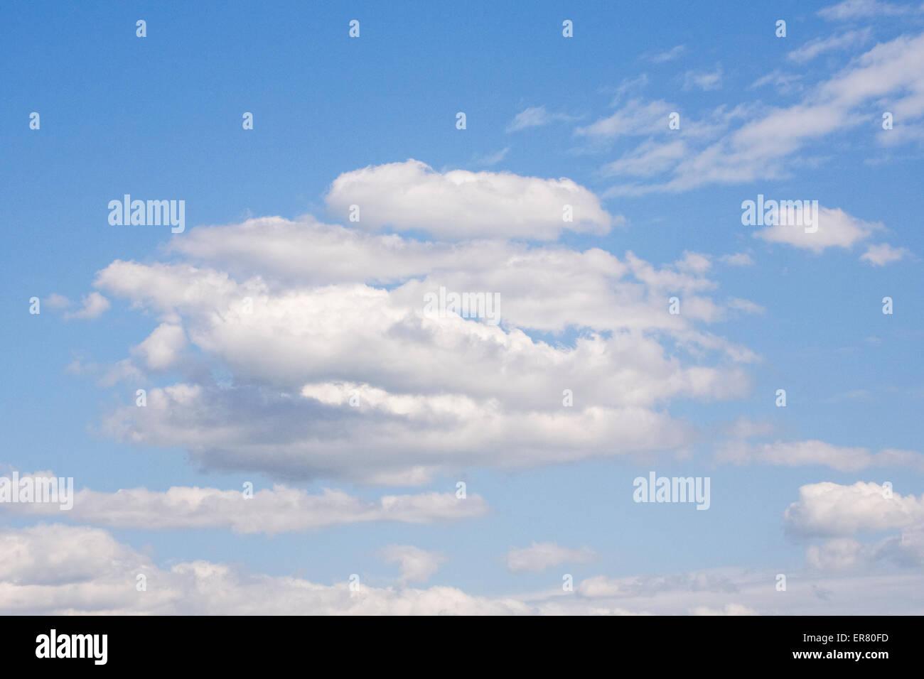 Cumulus-Wolken vor blauem Himmel. Stockfoto
