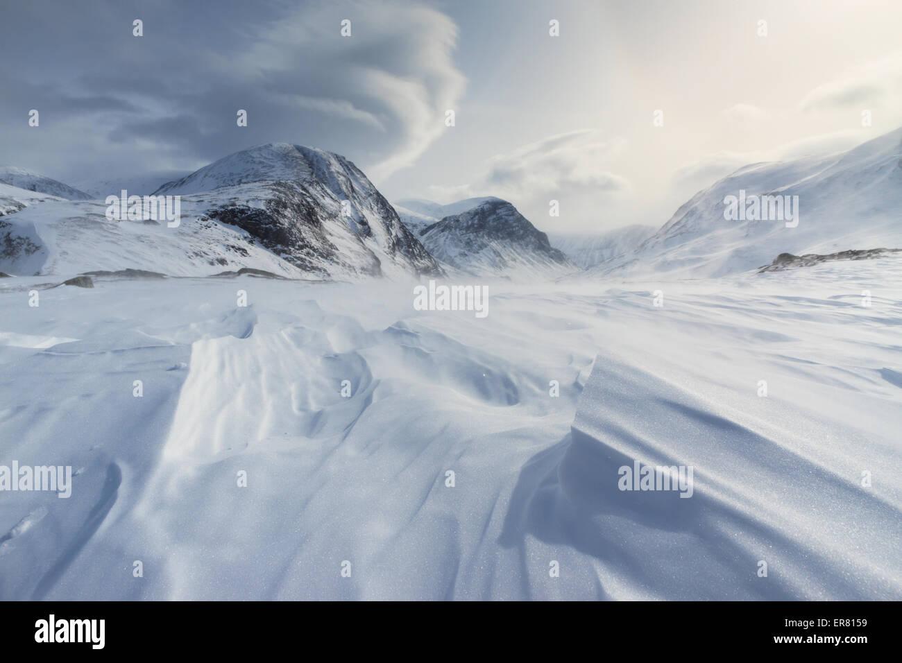 Winde über den Schnee in arktischen Schweden. Stockbild