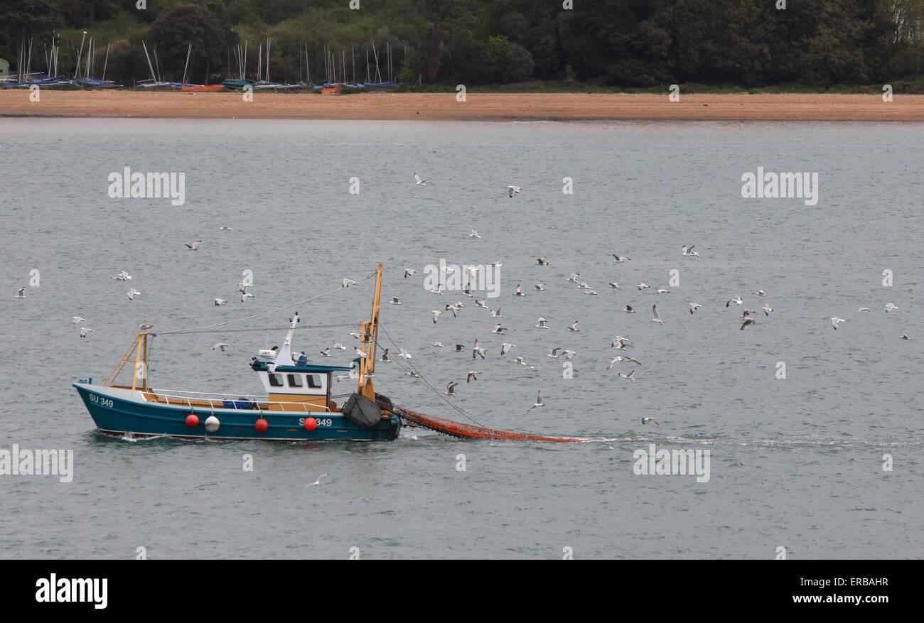 Angelboot/Fischerboot in Southampton Wasser zurück zu den Docks, gefolgt von Möwen Stockbild