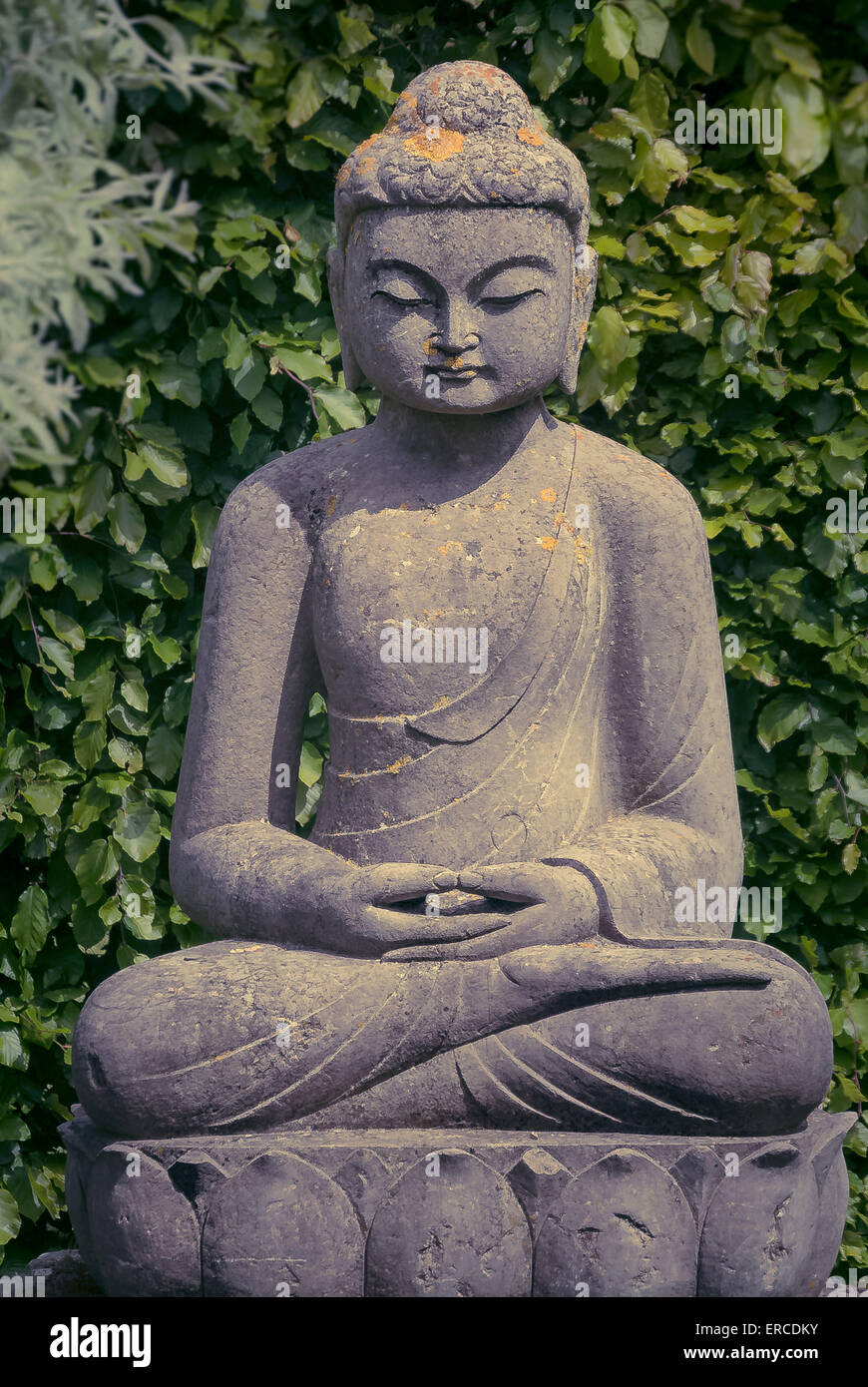 Buddha Statue Im Garten Stockfoto Bild 83252735 Alamy