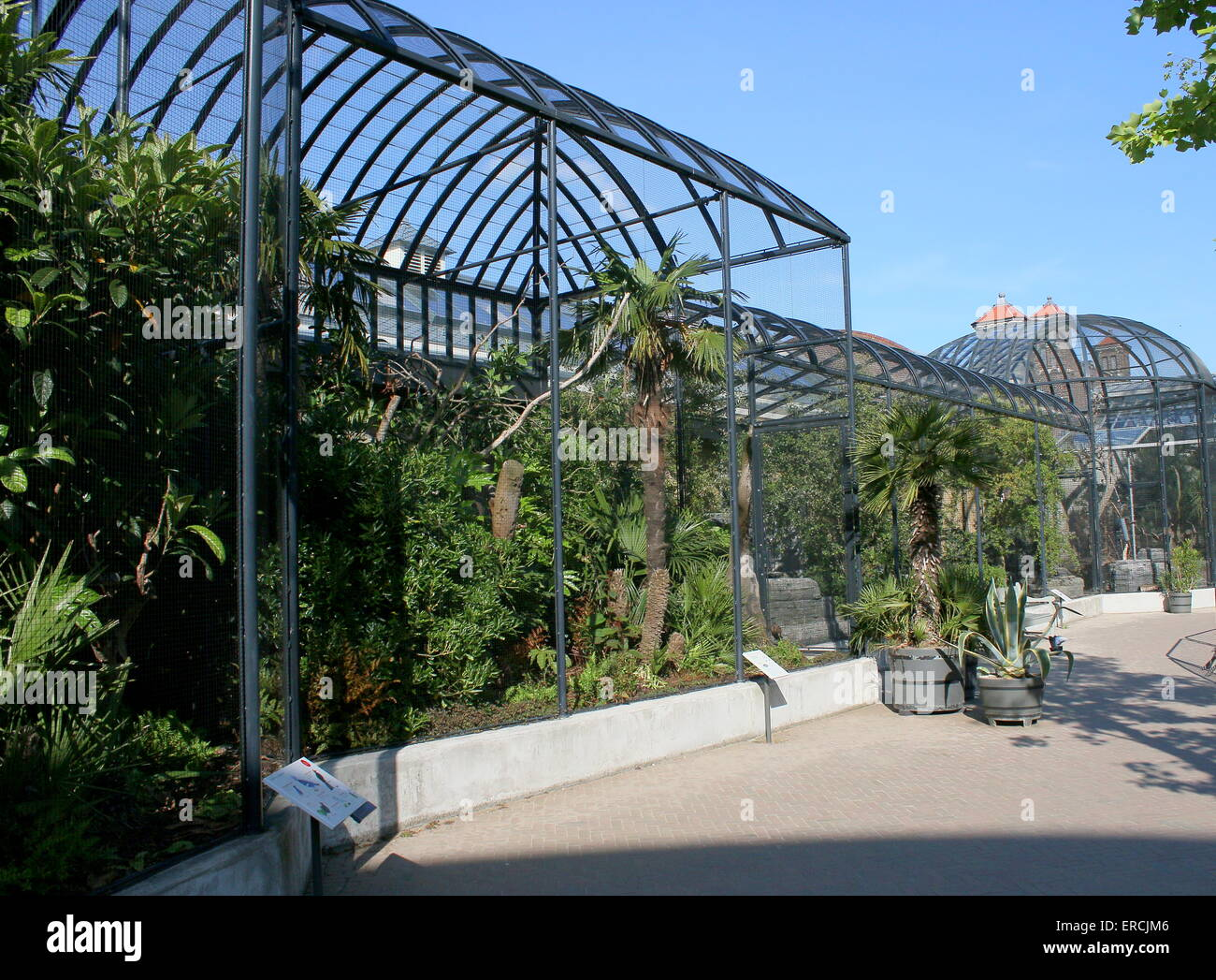 Dierentuin stockfotos & dierentuin bilder alamy
