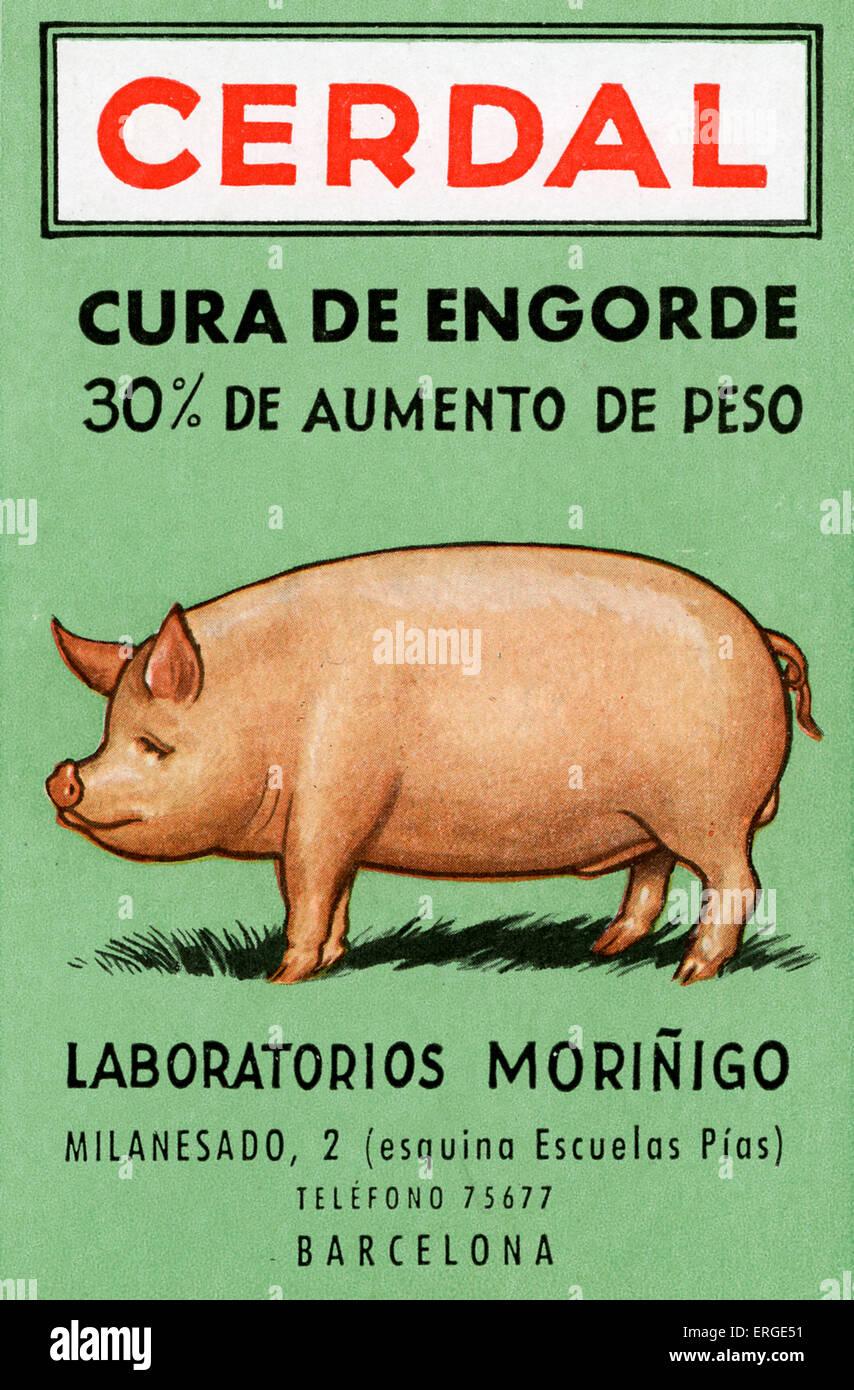 """Cendral - Anzeige für Schweine füttern von Laboratorios Morinigo Spanisch. Bildunterschrift: """"Cura Stockbild"""