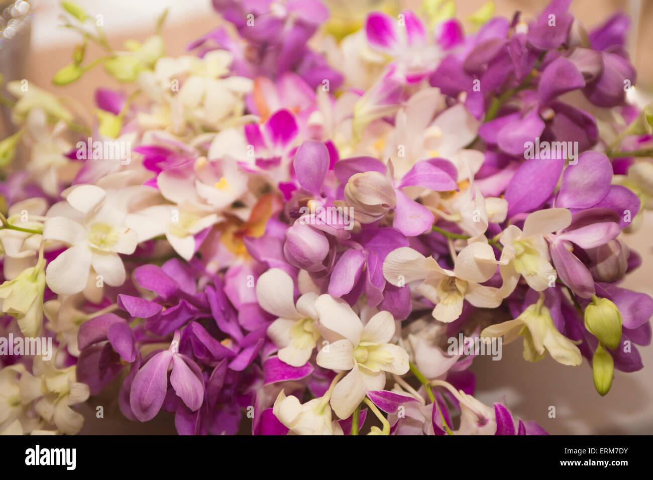 Blumenarrangement für besondere Anlässe - vor allem Hochzeiten Stockfoto