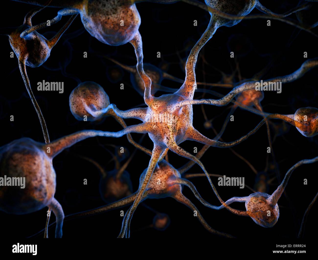 Netzwerk von Neuronen, Gehirnzellen, wissenschaftliche konzeptionelle 3D illustration Stockbild