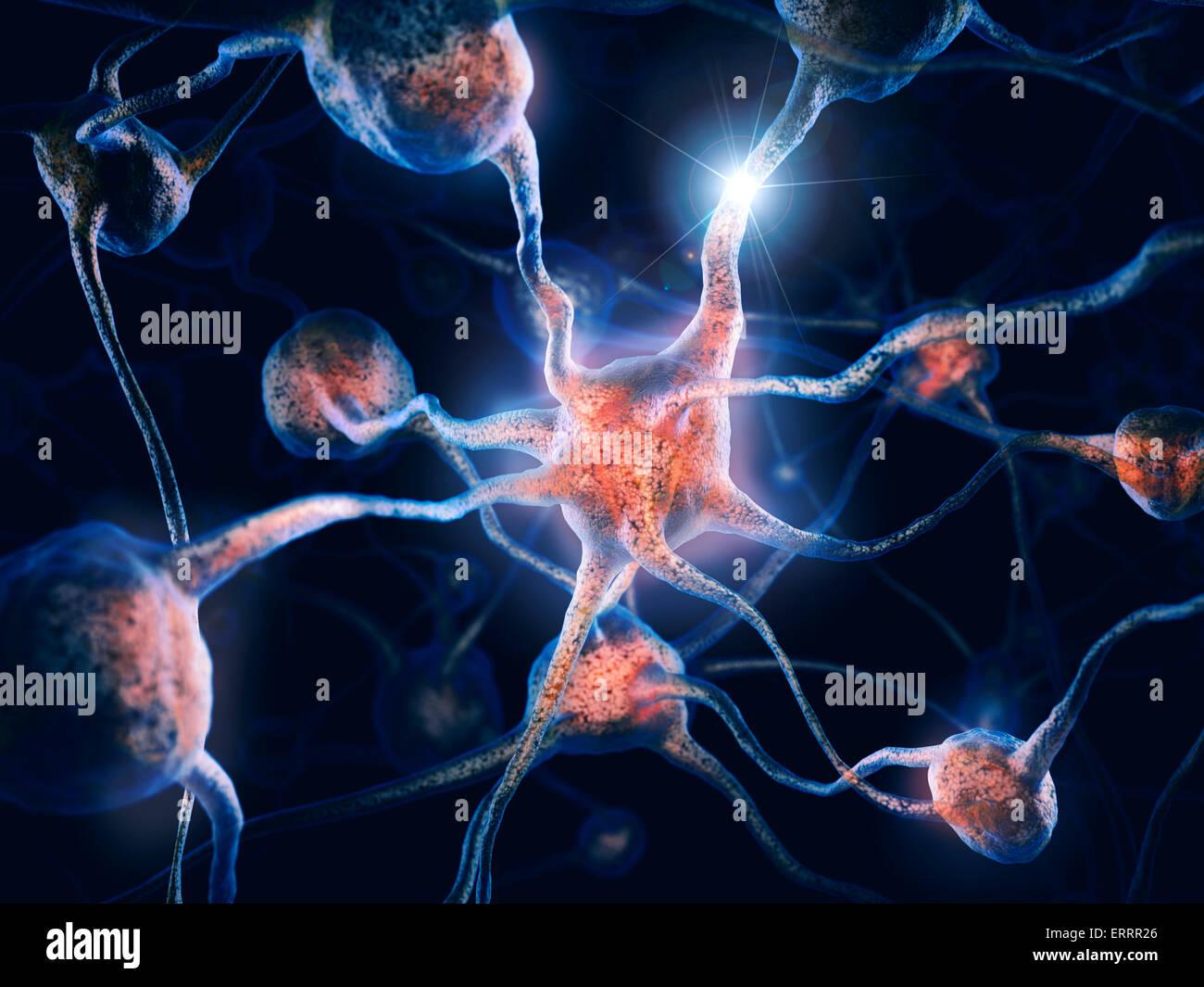 Netzwerk von Neuronen und Nervenverbindungen, Gehirnzellen, wissenschaftliche konzeptionelle 3D illustration Stockbild
