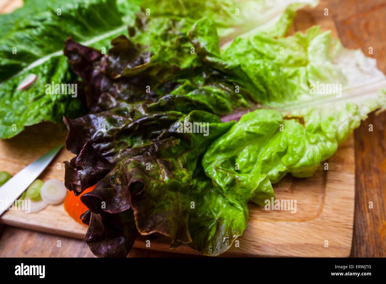 Salatzutaten, Romaine und roter Kopfsalat mit in Scheiben geschnittenen Karotten, Radieschen und Frühlingszwiebeln Stockbild