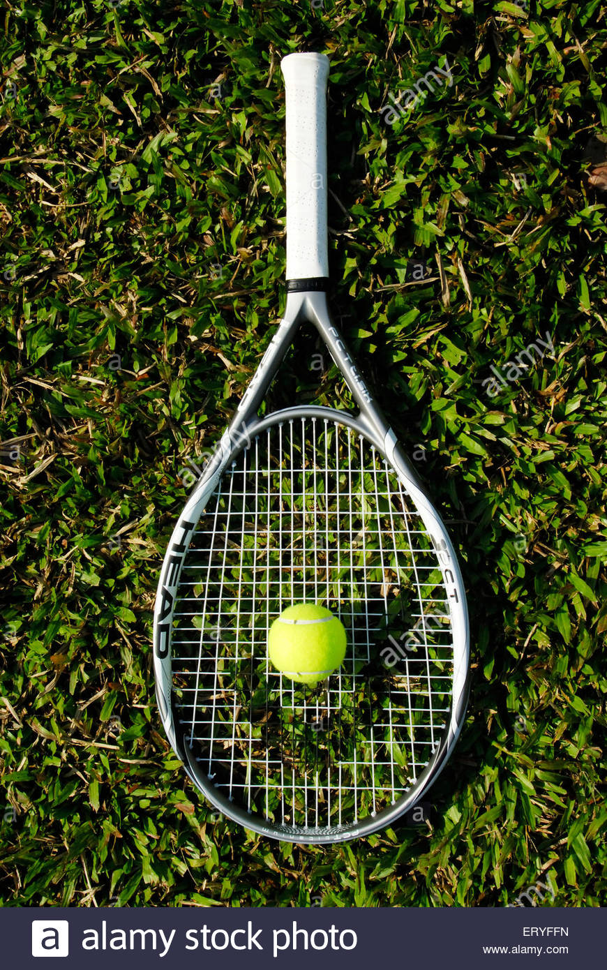 Tennisschläger mit Ball liegend auf dem üppigen grünen Rasen 2009 Stockbild