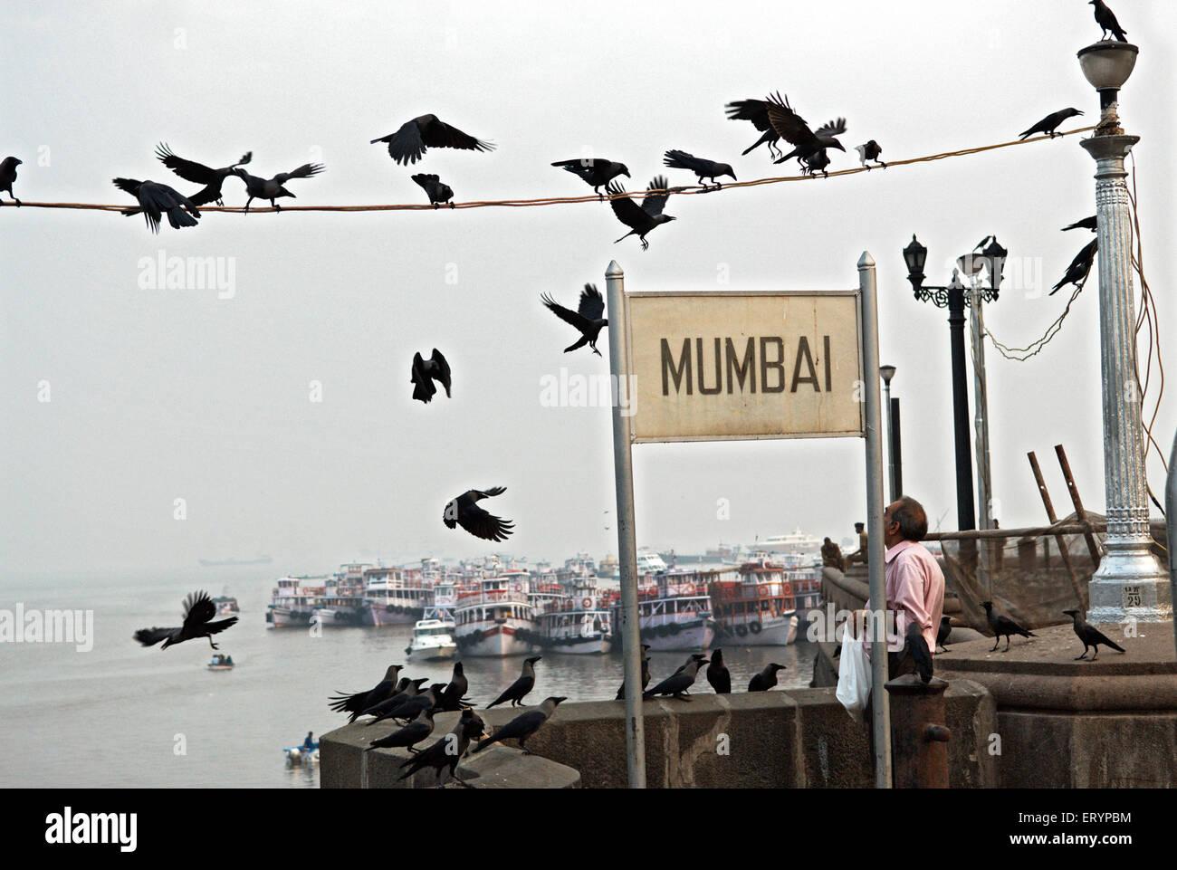 Besucher, die Krähen in der Nähe von Gateway of India in Mumbai Bombay zu ernähren; Maharashtra; Stockbild