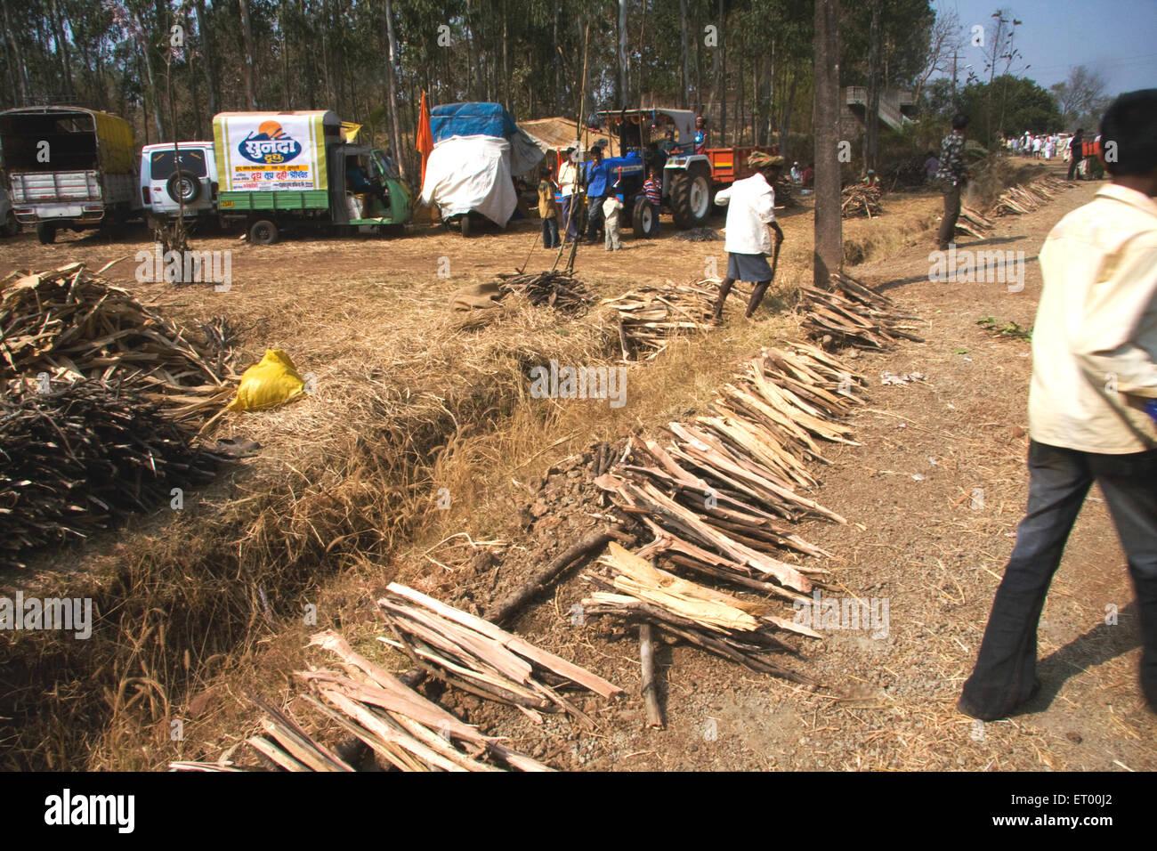 Feuer Holz Verkauf Am Stadtfest Dadi Belgaum Karnataka Indien