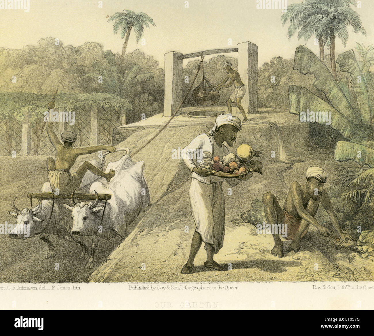 Koloniale indische Bilder; unserem Garten; Indien Stockbild