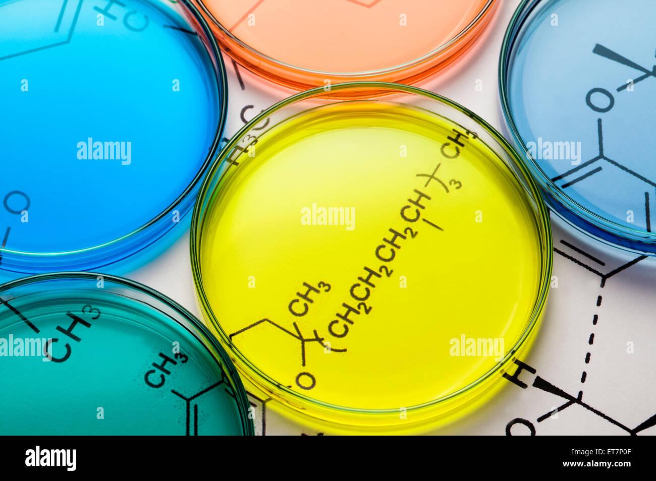 Gesundheitswesen und Medizin, Glas, Laborglas, Utensilien, Petrischale Stockbild