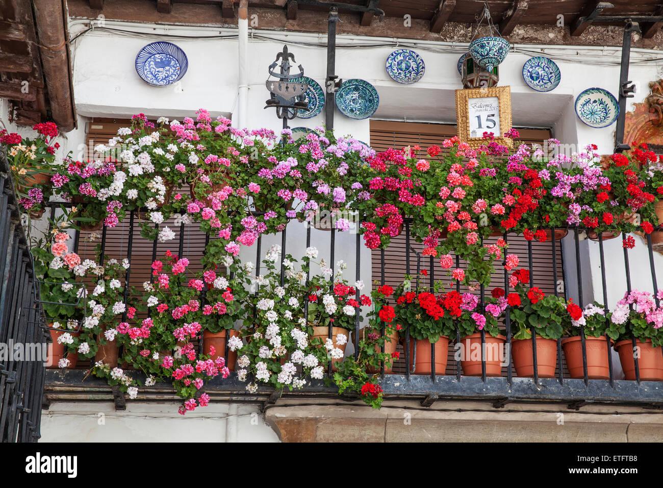 Geranie Blumentöpfe angezeigten Preis gewinnende Balkon - Granada, Andalusien, Spanien Stockbild