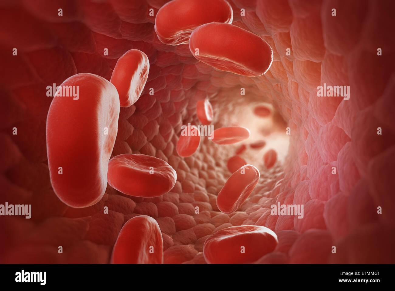 Stilisierte Darstellung, die roten Blutkörperchen fließen durch den Blutstrom. Stockbild