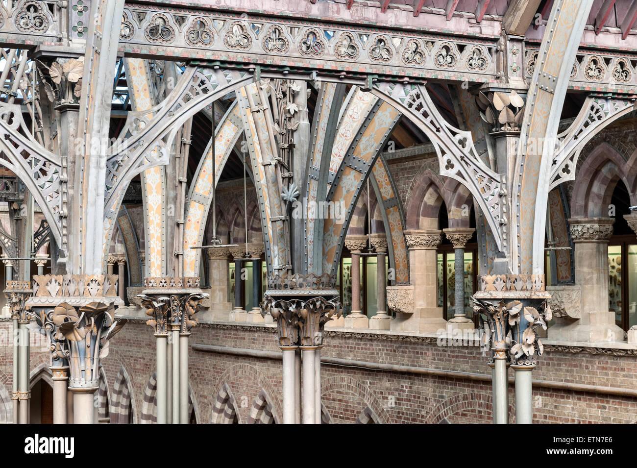 Der Oxford University Museum of Natural History, UK. Die Haupthalle zeigt die gusseisernen Säulen, die das Stockbild