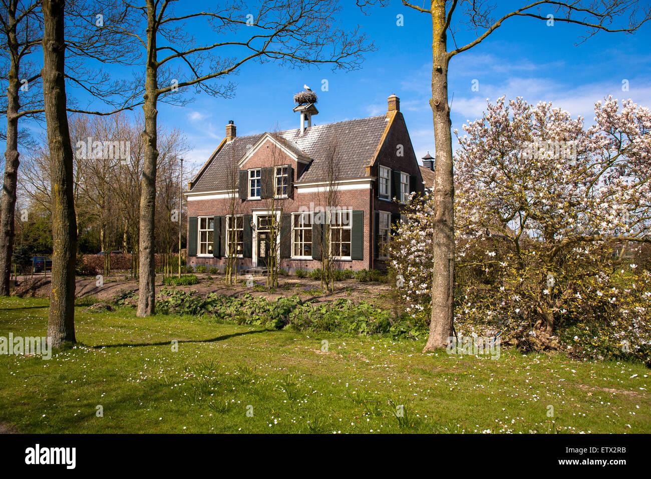 NLD, Niederlande, Gelderland, Haus mit Störche nisten in Rossum am Rhein.  NLD, Niederlande, Gelderland, Haus Stockbild