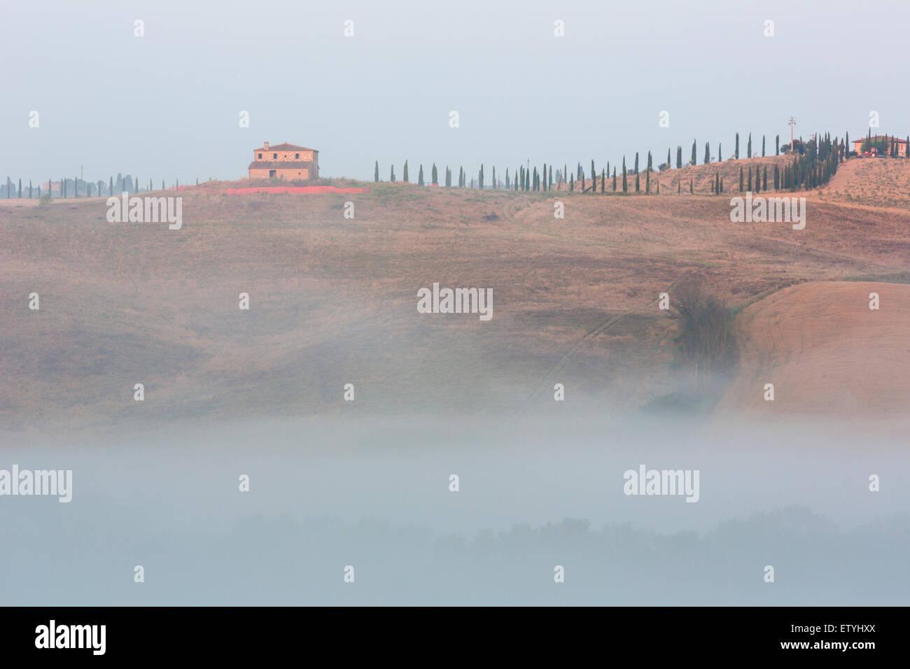 Blick über landwirtschaftliche Landschaft im Val d'Chiana in Toskana, Italien Stockbild