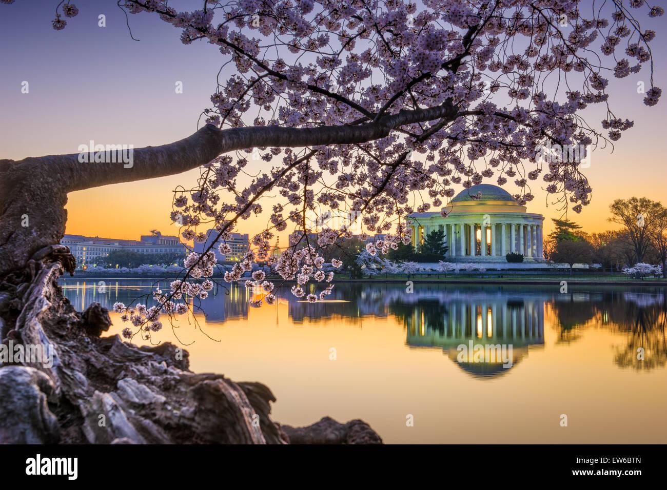 Washington, DC am Jefferson Memorial im Frühjahr. Stockbild