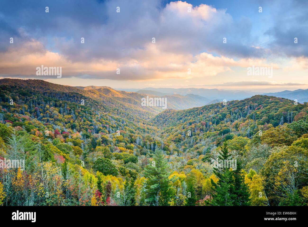 Herbstlandschaft Smoky Mountains National Park, Tennessee, USA. Stockbild