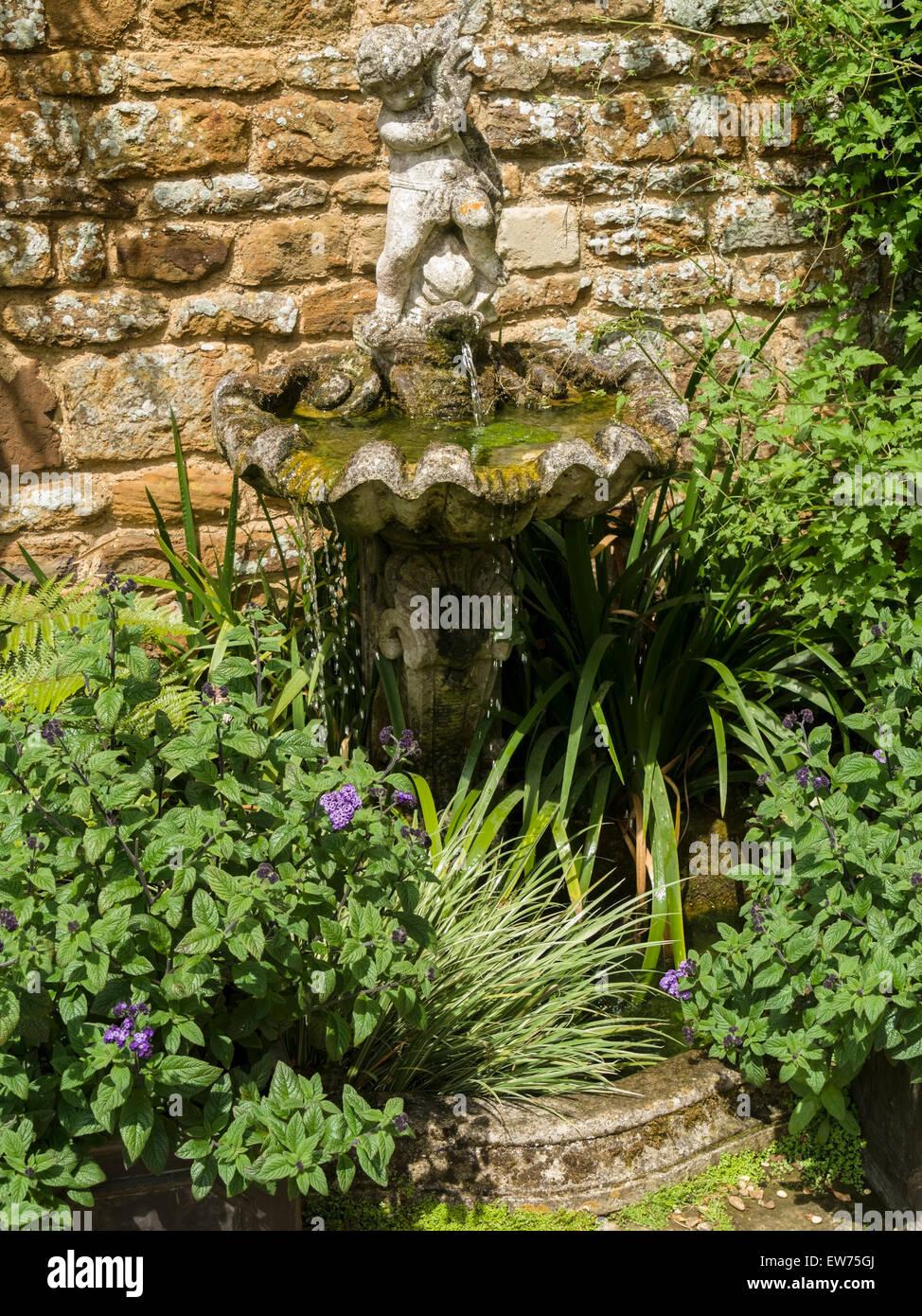 Stein Wasserspiel, Vogeltränke, Cherub, Brunnen, Coton Manor Gardens ...