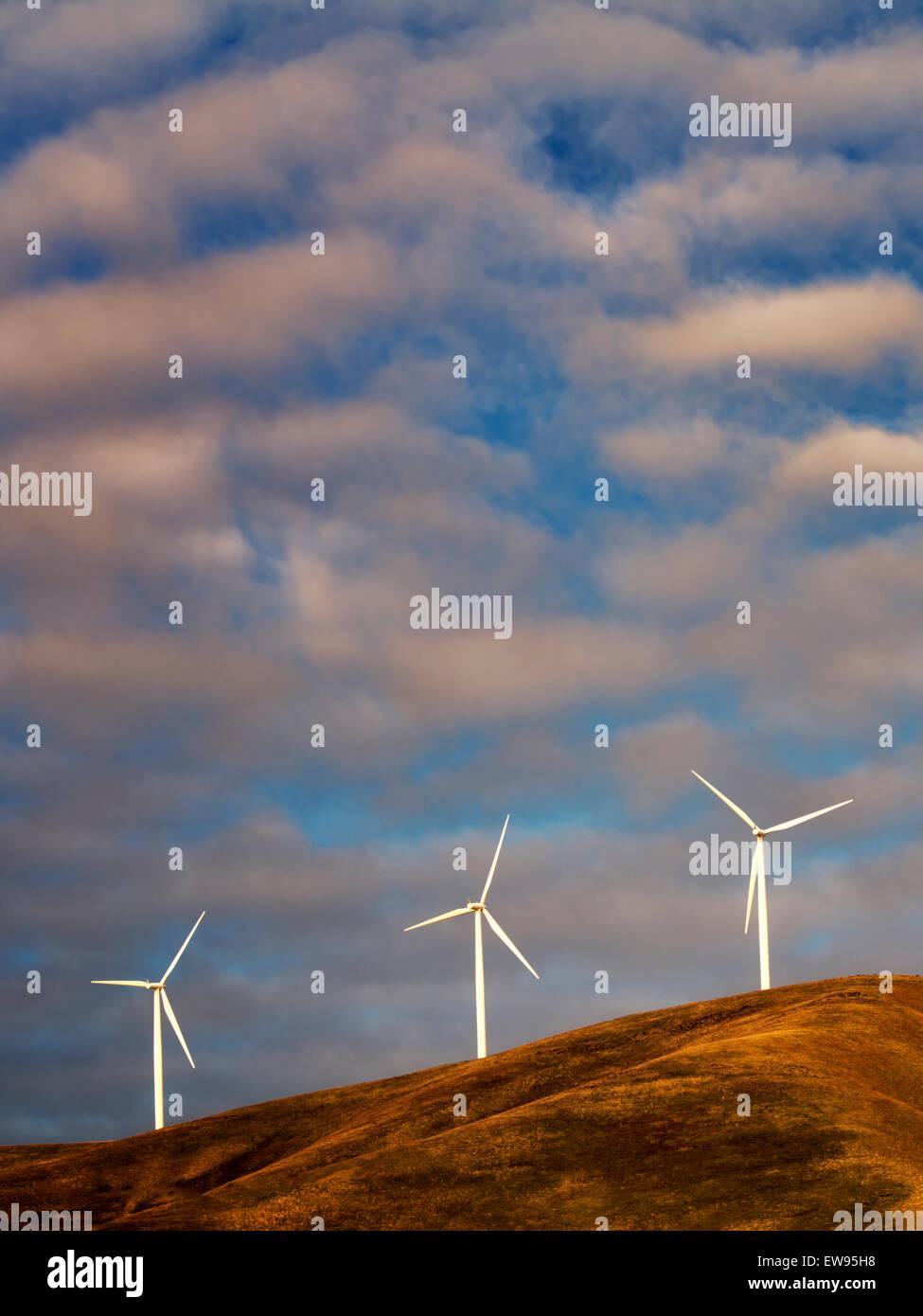 Windmühlen in der Nähe der Columbia River Gorge, Oregon Stockbild
