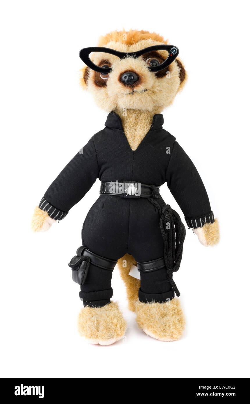 Agent Maiya Erdmännchen Spielzeug aus Comparethemarket.com Preisvergleich-Website, UK Stockbild
