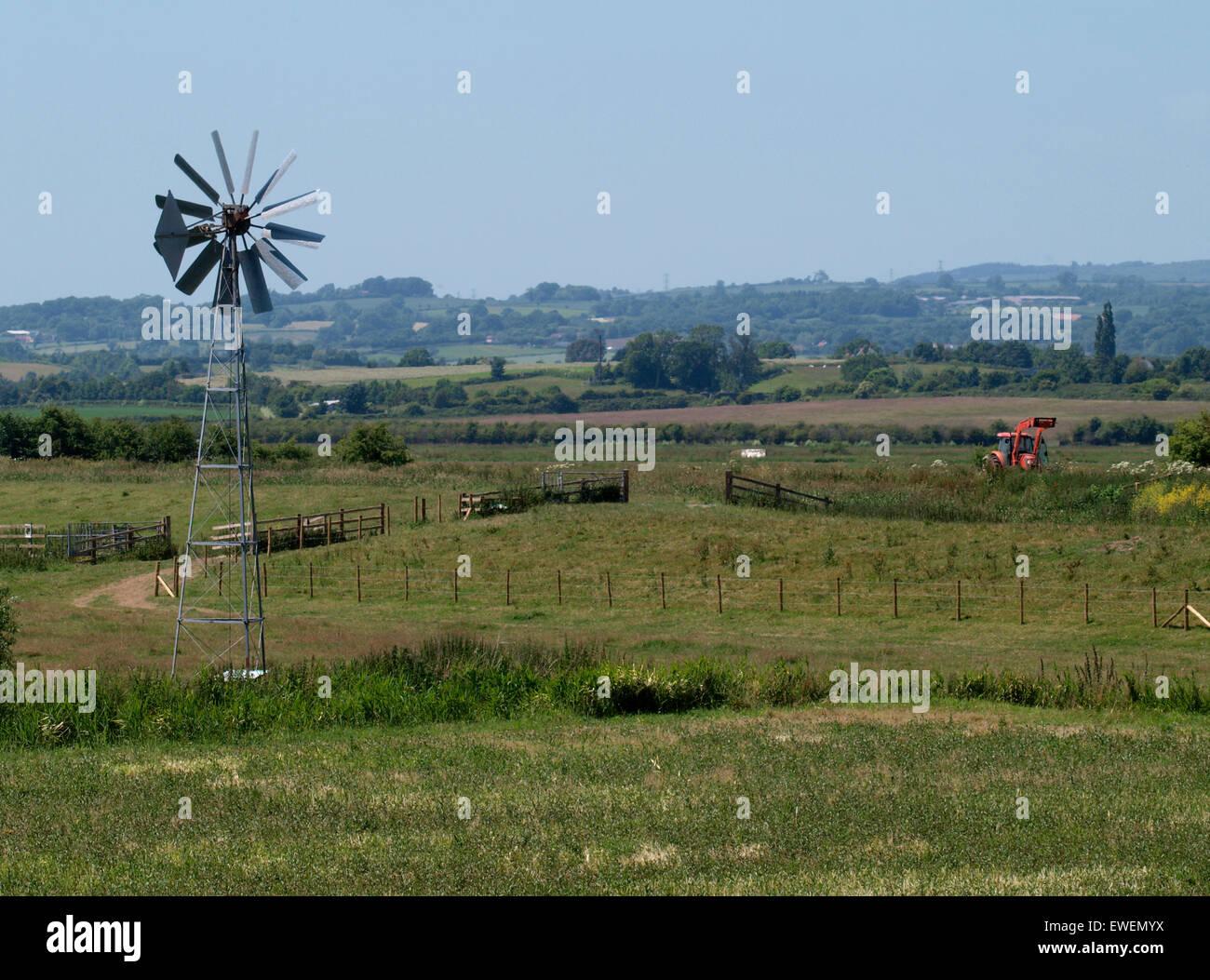 Wind angetriebene Wasserpumpe auf den Somerset Levels, UK Stockbild